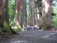 2012.08.12.009-1.00 Japan_戸隠_戸隠神社