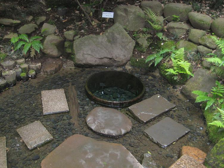 2012.05.01-006-1.00 Japan_東京_明治神宮_清正の井戸