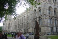 14ロンドン(自然史博物館)