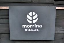 02 morrina