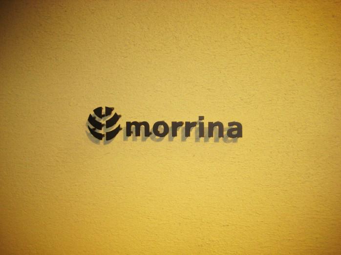 05 morrina