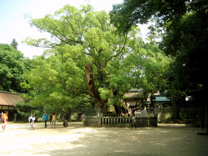04 大山祇神社