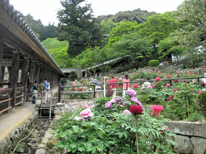 03 長谷寺