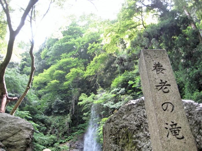 01 養老の滝