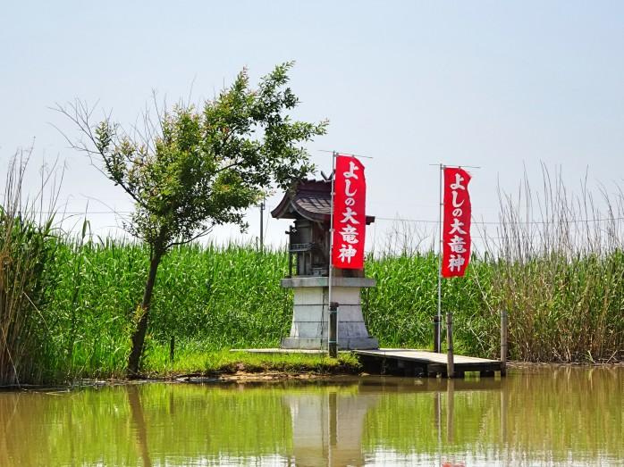 09 近江八幡の水郷めぐり