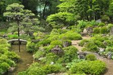 15 恵林寺_池泉廻遊式庭園