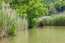 03 近江八幡の水郷めぐり