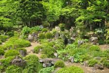 16 恵林寺_池泉廻遊式庭園