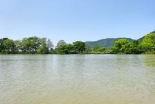 12 近江八幡の水郷めぐり