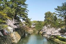 03 岡崎城のお堀