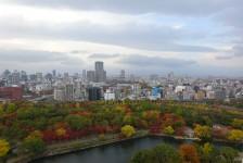 15 大阪城_天守からの眺望