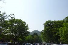 01 八幡山