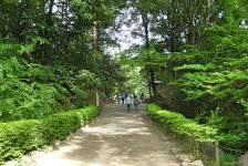 12 武田神社