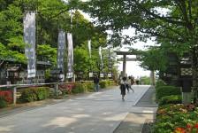 13 武田神社
