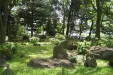 13 旧岩崎邸庭園