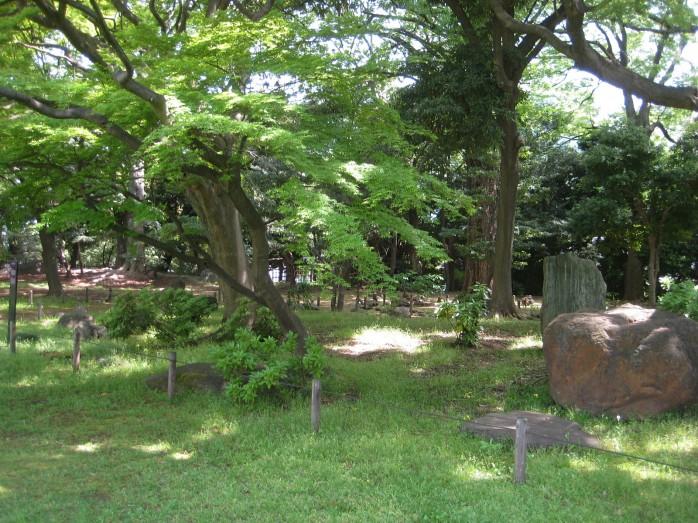 14 旧岩崎邸庭園