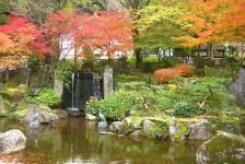 01 岐阜公園(庭園)