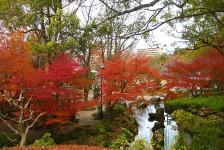 02 岐阜公園(庭園)