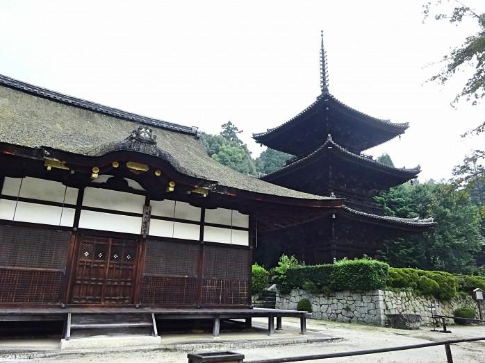 06 園城寺(三井寺)_灌頂堂と三重塔