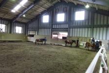 10 木曽馬の里
