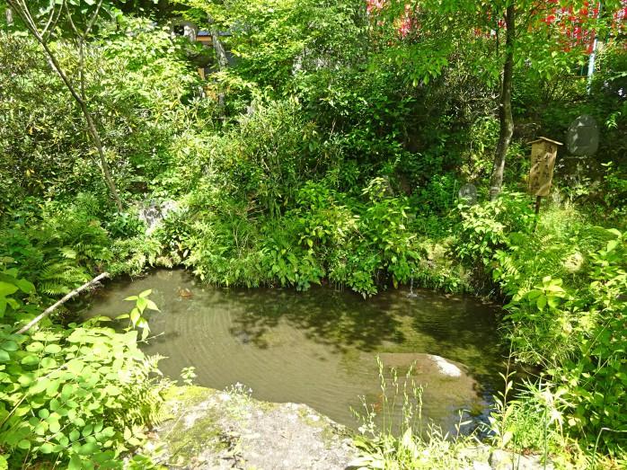 06 臨川寺_浦島太郎姿見の池