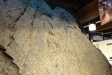 04 小谷村郷土館_恐竜の足跡の化石