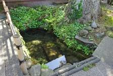 02 ニテコ清水
