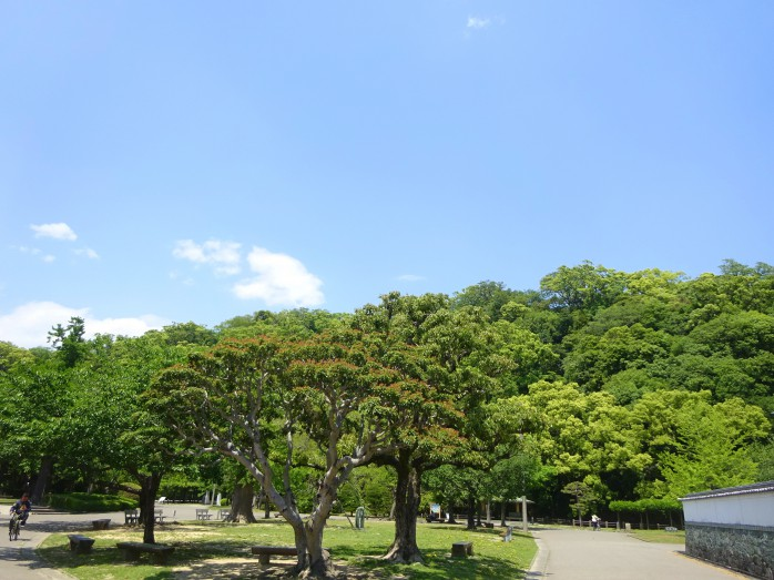 03 徳島城跡_本丸の置かれていた城山
